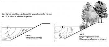 Fig.11 -  Schéma de l'impact de la végétation sur le champ des vitesses dans l'écoulement (d'après BMLFW dans Donat 1995).