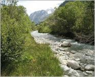 Fig. 1 -Modèle de berges naturelles en cours d'eau de montagne.