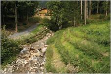 Fig. 1 -Protections de berges en génie végétal sur la Petite Gryonne, cours d'eau torrentiel des Préalpes vaudoises (chantier pilote Géni'Alp - Canton de Vaud - Suisse).