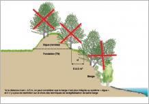 Fig.4 - Modalités de gestion des ligneux sur les digues.