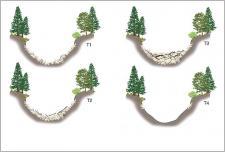 Fig. 6 -La morphologie des ravins situés en tête de bassin est fortement contrôlée par les apports sédimentaires en provenance des versants ; de longues phases d'accumulations sédimentaires se succèdent avec des phases rapides de vidange brutale sous forme de coulées de débris (T4– d'après Jakob etal. 2005).