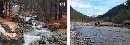 Fig. 7 - (a) exemple de step-pool, morphologie en alternance de marches et de fosses de surcreusement ; (b) exemple de lit en seuil-mouille-banc.