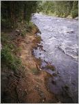 Fig.10 - Ouvrage de génie végétal sur une rivière dynamique juste après sa mise en place.