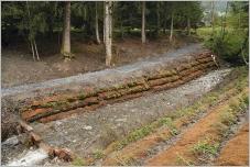Fig.18 - Caissons en rondins, végétalisés, pour soutenir le chemin en rive droite.
