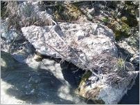 Fig.42 - L'observation de la fixation du câble montre que le bloc a tourné sur lui-même au cours d'une crue.