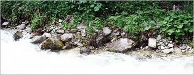 Fig.9 - Exemple d'un enrochement naturel en pied de berge d'un torrent.
